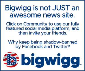 Try the Bigwigg social media platform